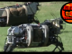 DARPA Robot Beasts