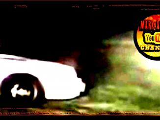 Car Thieves Drown