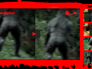Georgia Bigfoot
