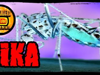 Europe Zika Fears